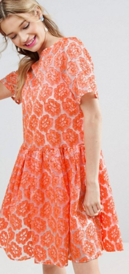 Embroidered Floral Organza Skater Dress